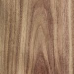 matilda veneer north queensland blackwood crown portrait (Medium)